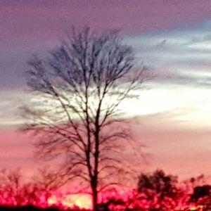 Sunset at Buck Run